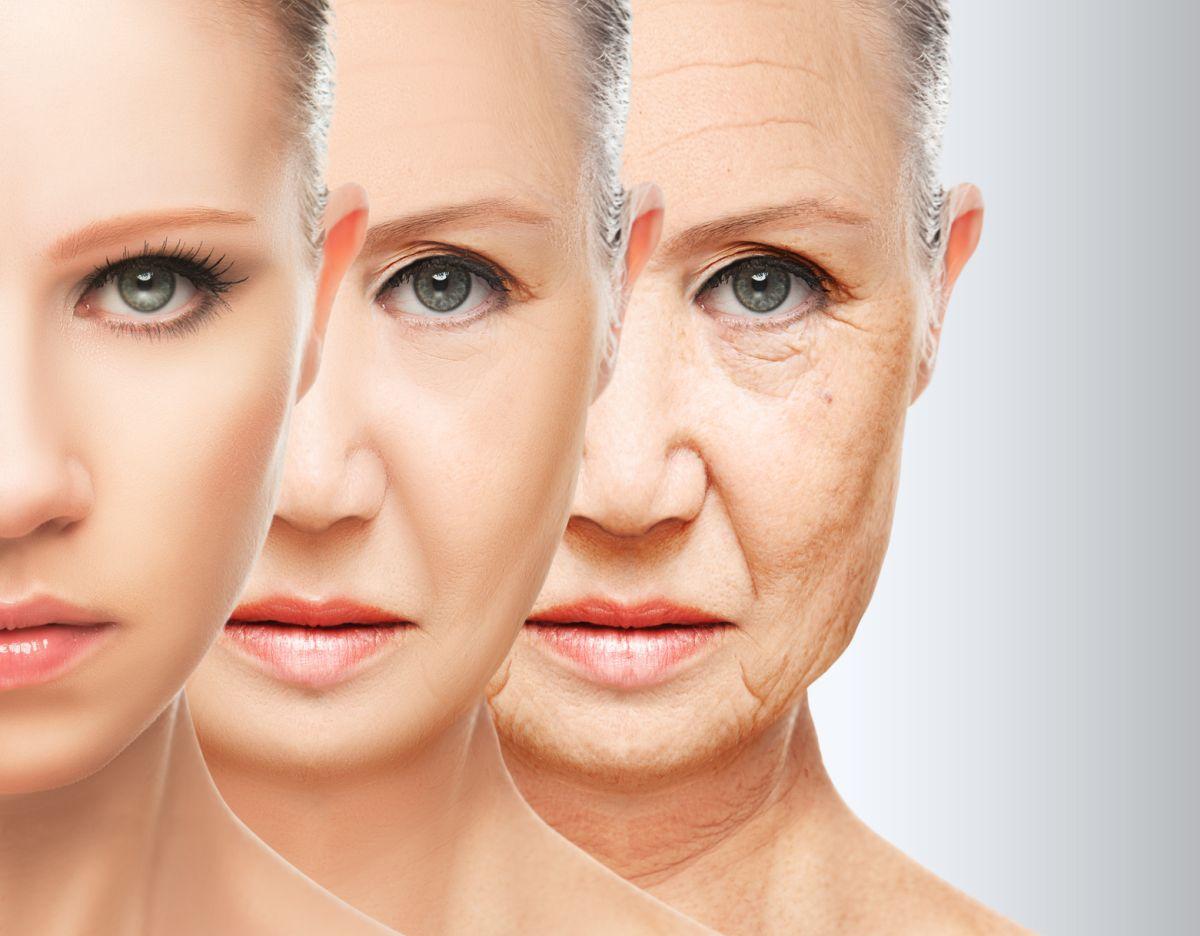 Wpływ nikotyny na starzenie się organizmu
